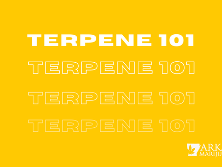 A Guide to Terpenes at Arkansas Dispensaries: What do They do and Which Ones Should You Look For?