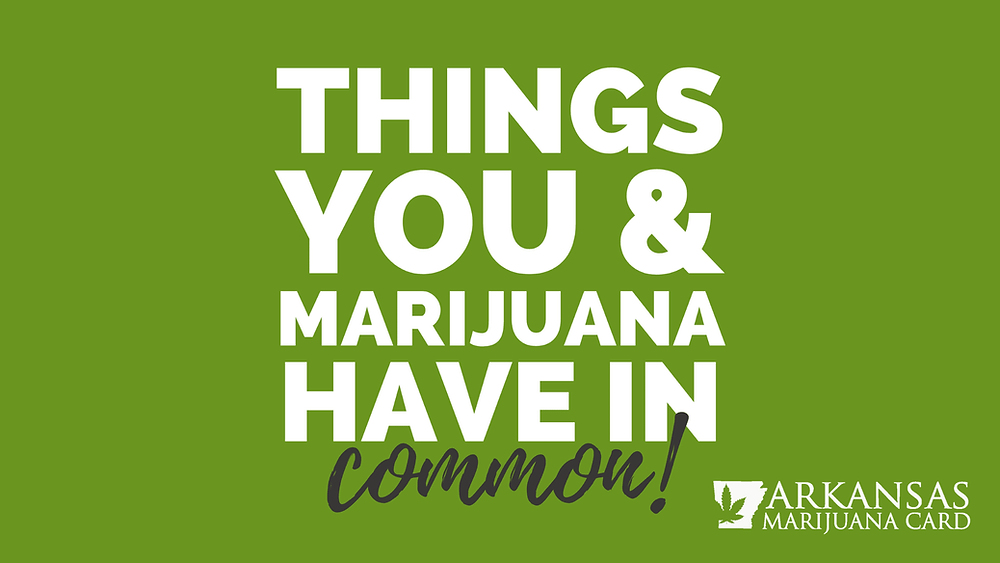 things you and marijuana have in common