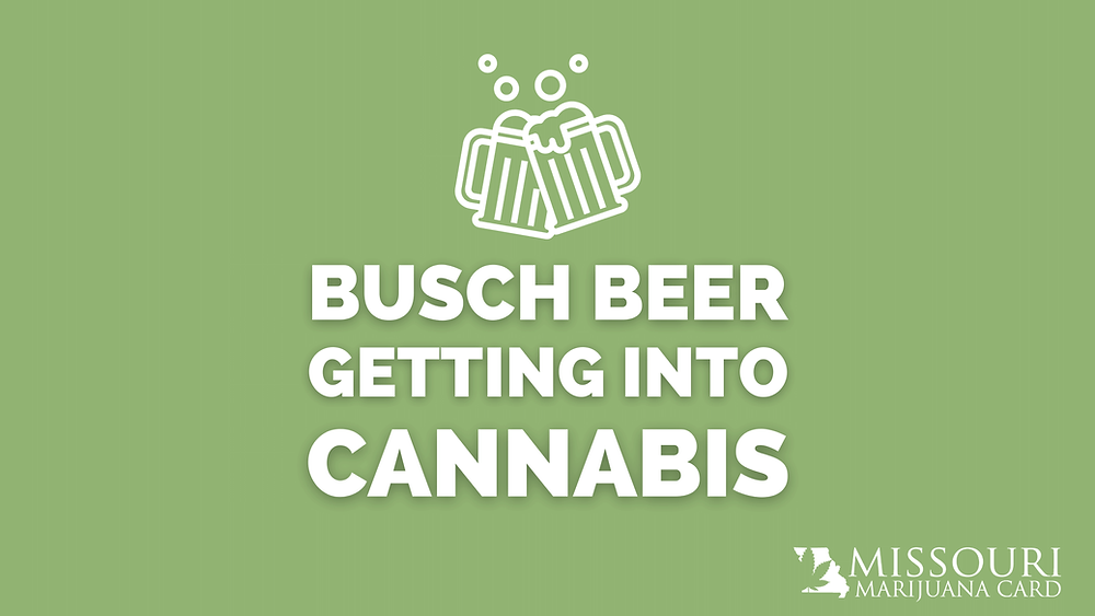 Busch beer getting into cannabis
