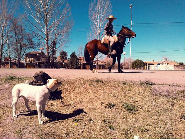 San Rafael, Route 40 Argentine 2013