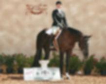 stacievanwatermulen-horsetrainer