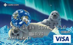 Card-Schim-Schimmel-8-VISA