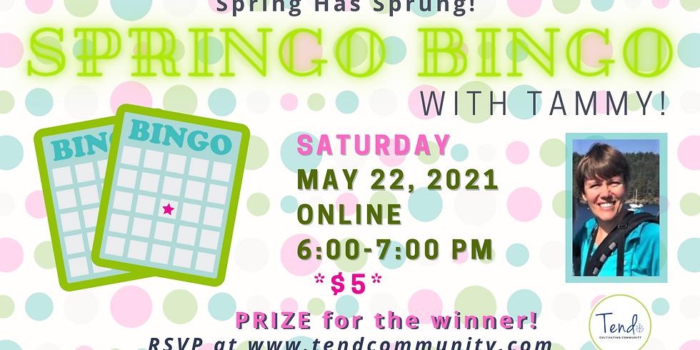 Springo Bingo
