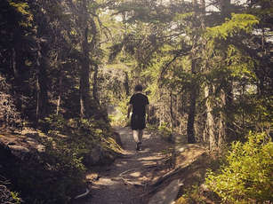 Fieldrecording/SFX: Schritte im Wald