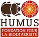 humus fondation.jpg