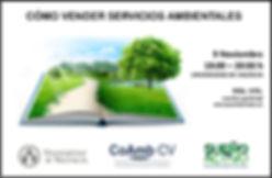 Cómo vender servicios ambientales