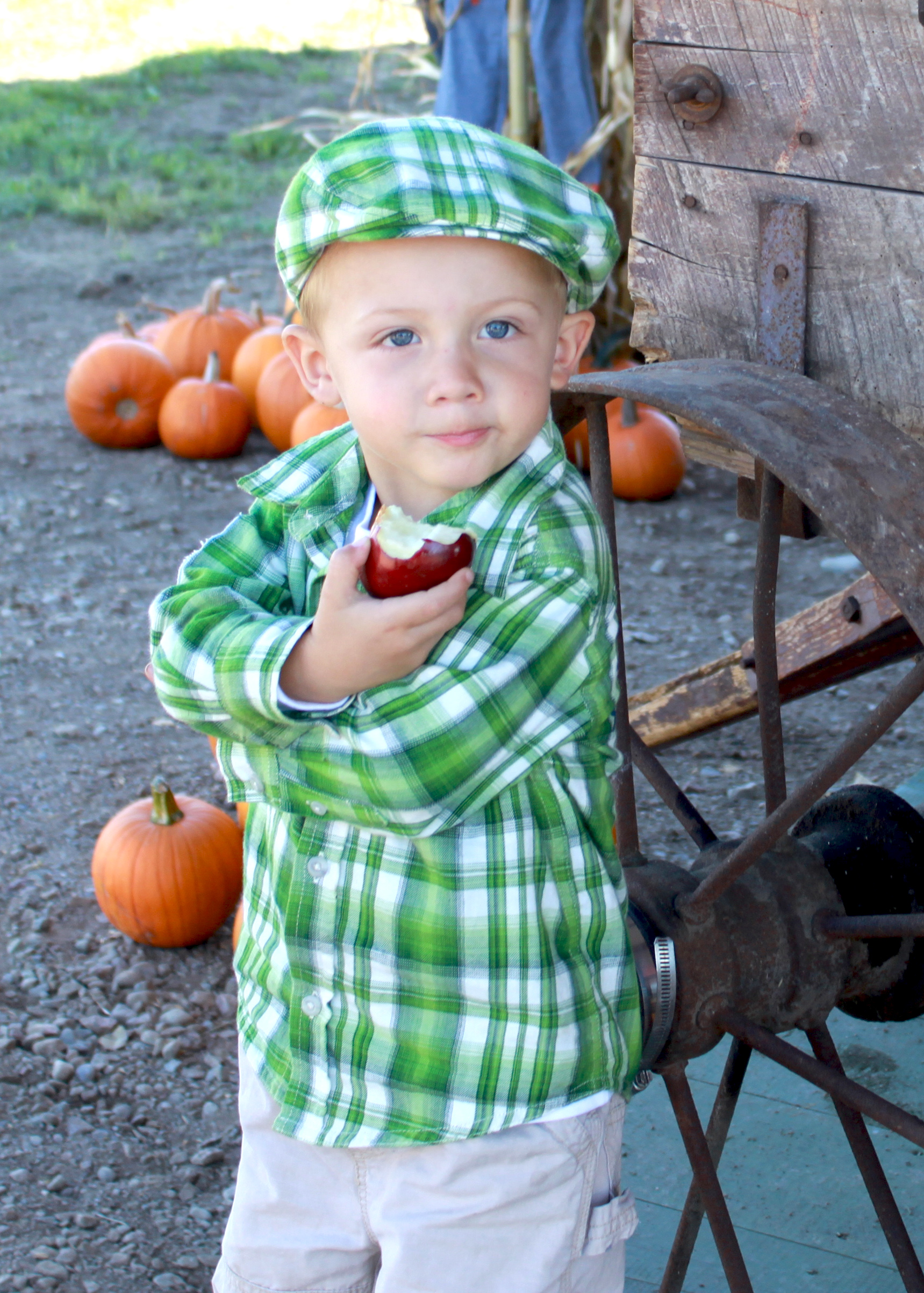 Young boy biting into fresh apple