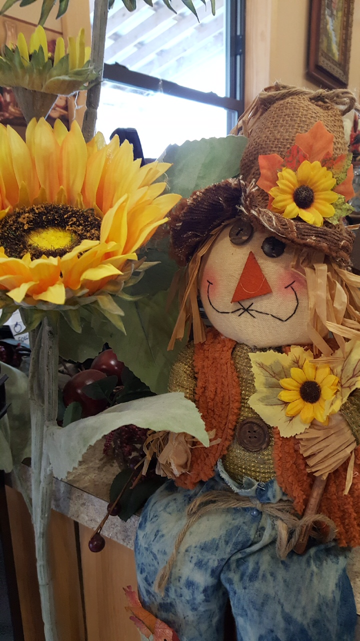 Photo of scarecrow in the store