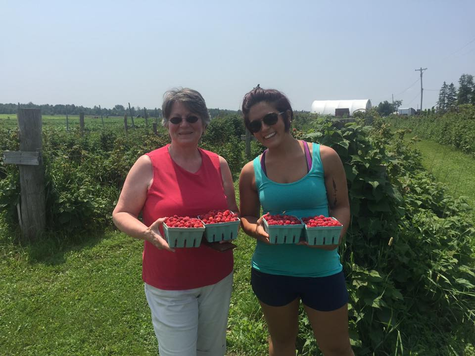 Two women picking raspberries