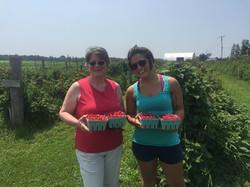 Two women picking raspberries