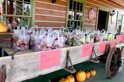 Bags of apples for sale