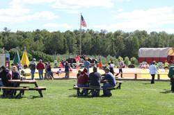 Landscape of playground