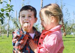 Two children eating apples