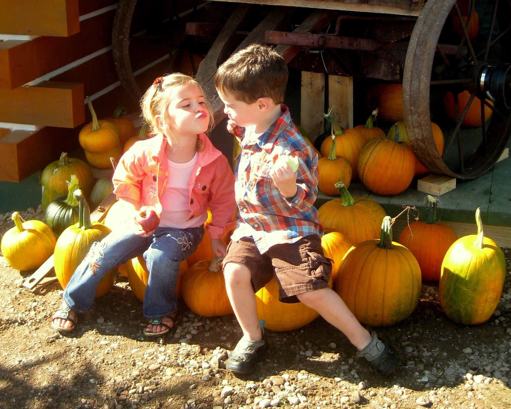 Young girl and boy sit on pumpkins