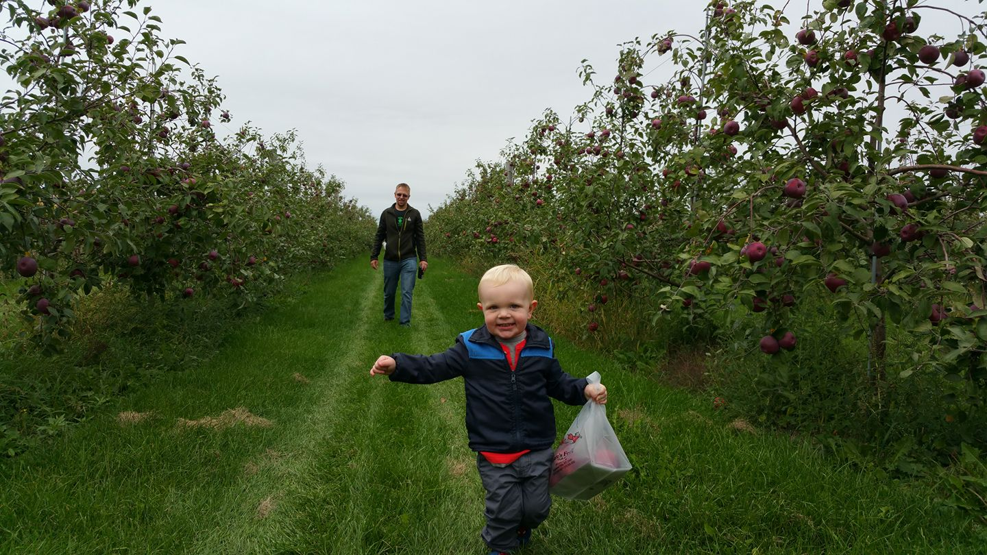 Child running through apple orchard