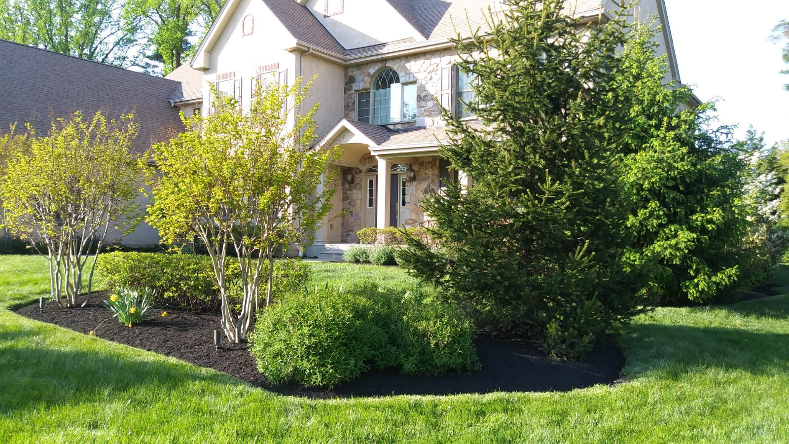 Land / Lot Cleaning