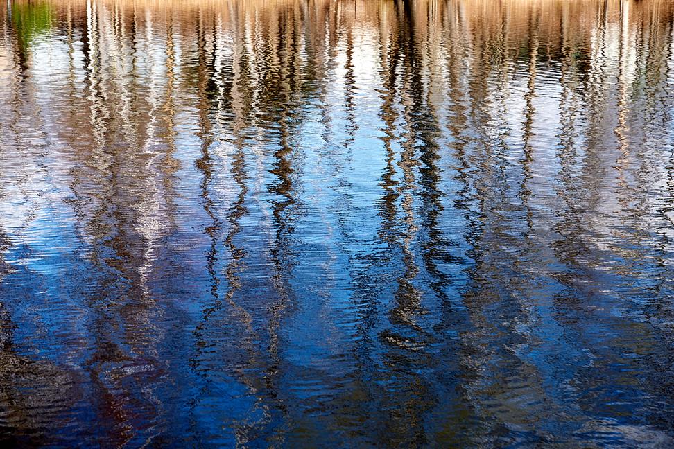 04 17 Pond_DSF2207.jpg