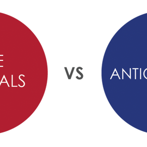 How important are Antioxidants?