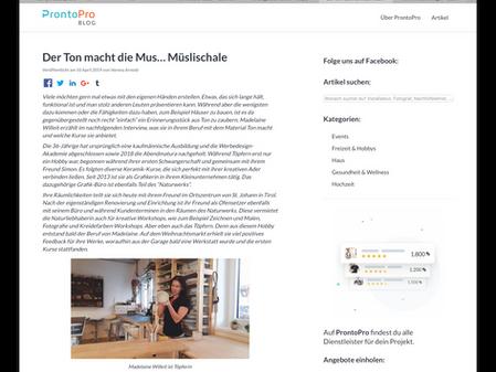 Interview im Blog von ProntoPro