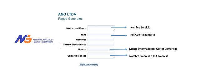 instrucciones webpay.jpg