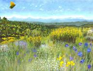 L41 paysage