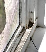 Banish flies from your window tracks!