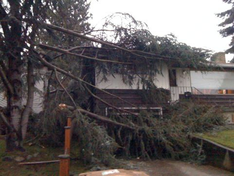 Keeping your home protected in the wind