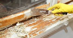 Lead paint:  What you need to know about this hazard