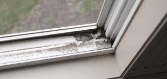 Secret to getting window tracks clean