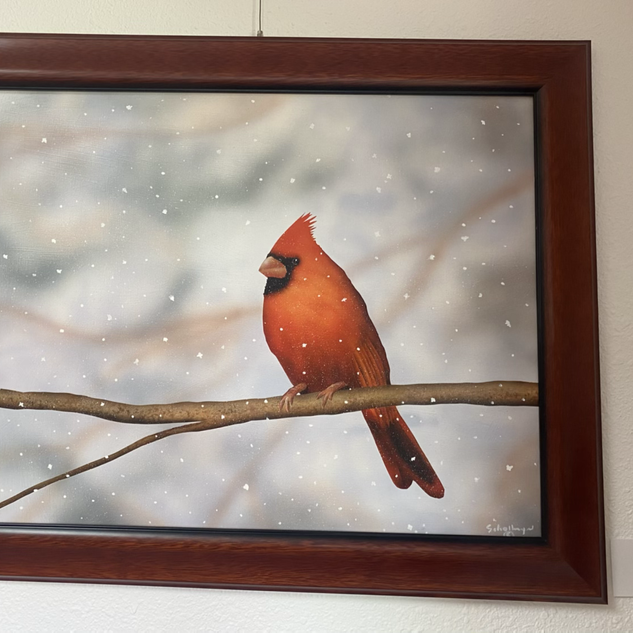 Waiting Cardinal by Fred Schollmeyer