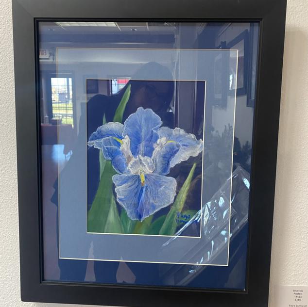 Blue Iris by Faye Zumalt