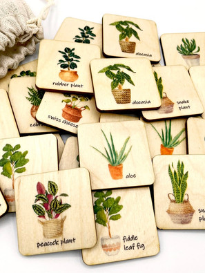 Play A Wooden Houseplant Matching Game