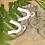 Thumbnail: Elegant Arch   Floral