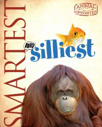 AO_smartest_cover