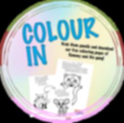 colour in