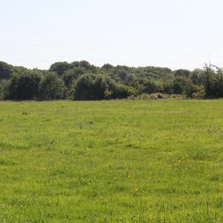 24 hectares prairies