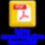 manual_ponto_pdf_ico.png