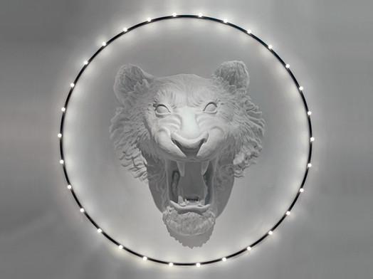 Circus-imperfetto-lab-2