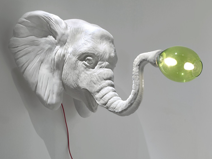 Elefant--imperfetto-lab-1