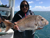 Big Snapper Auckland fishing