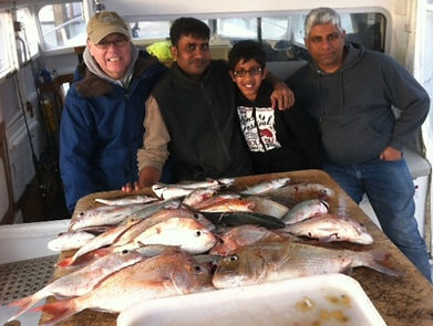 Riko Boat Charters ,snapper fishing,Auckland travel