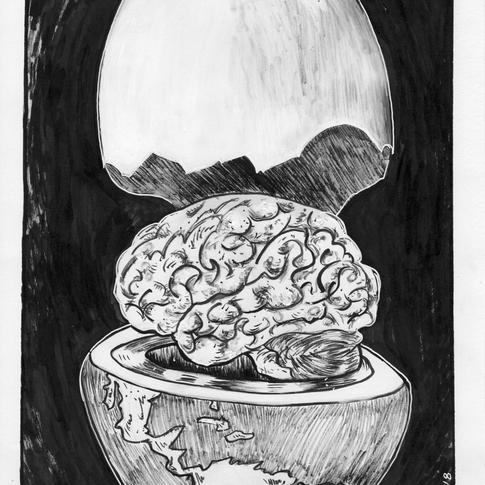 Brain Earth Series