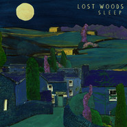 Lost Woods - Sleep