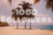 Palm - 1000.png