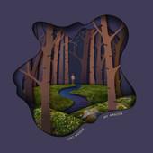 Lost Woods - My Amazon.jpg