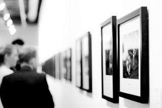 Art Galleries and Websites