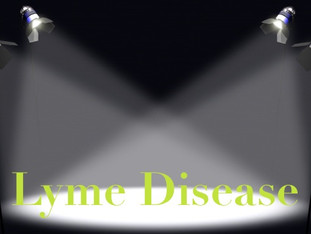 Lyme Disease; A Personal Symptom Snapshot and Facts You Want To Know
