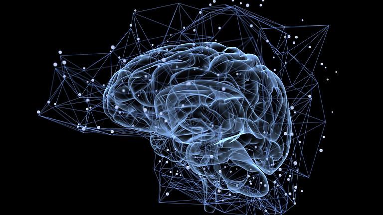Neuroscientific Pitching: Enhance Your Public Speaking