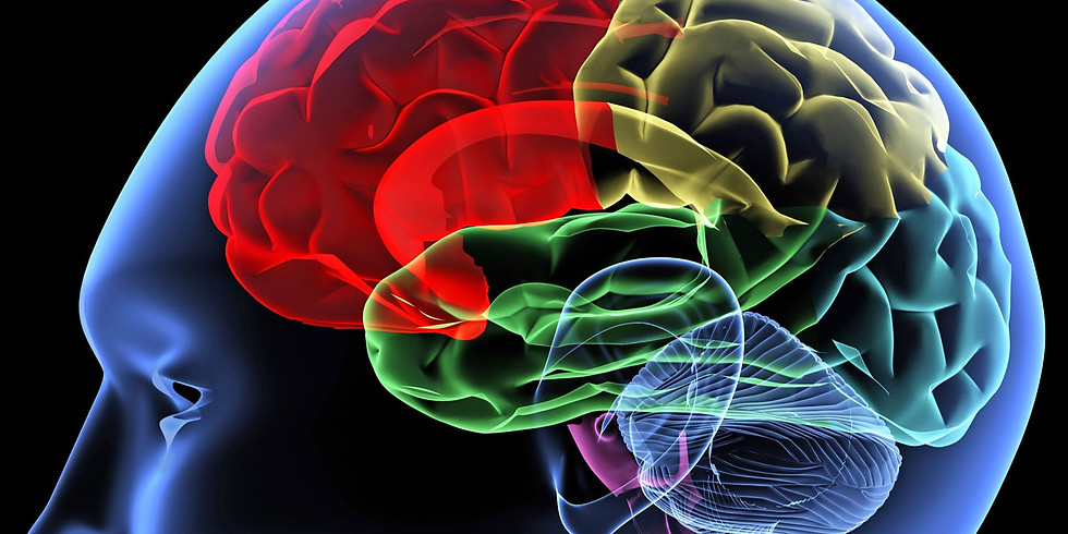 Mastering The Neuroscience of (Online) Persuasion: How to Impact Decision