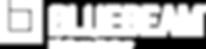 BB-Logo-H-PltnmPrtnr-White-3x.png